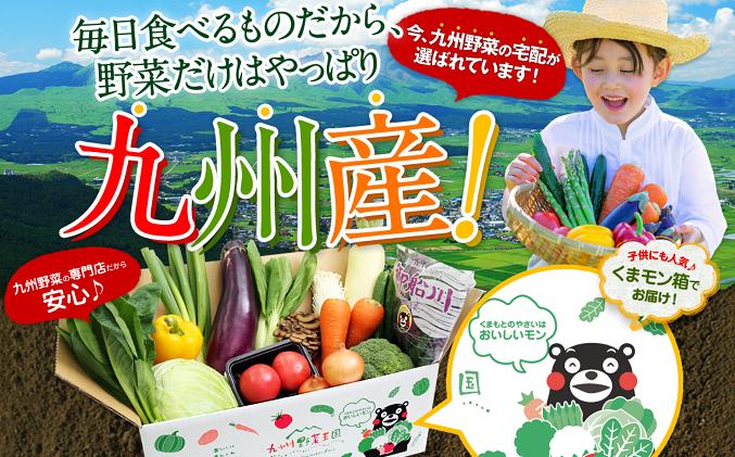 野菜の宅配 おすすめはやっぱりコレ!今 九州野菜がアツイ?!
